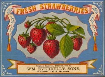 everdell.strawberry