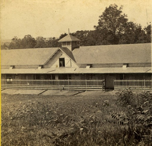 """""L.W. Jerome's Private Stables, celebrated trotting horse Idlewild kept in this stable."" Published by E. & H.T. Anthony & Co."
