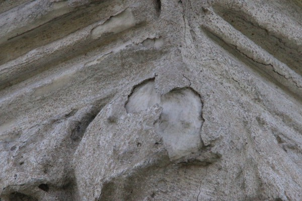Note the material--likely the liquid fiberglass specified in cemetery records--over the lighter-colored marble. Detail of the right front capital.