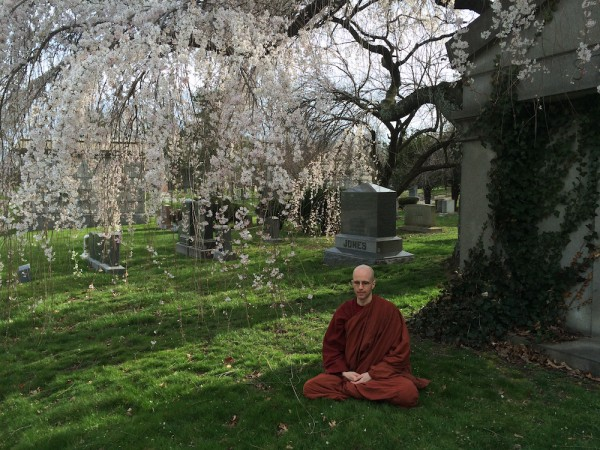 buddhist-insights
