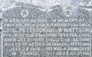 peterson-mattson