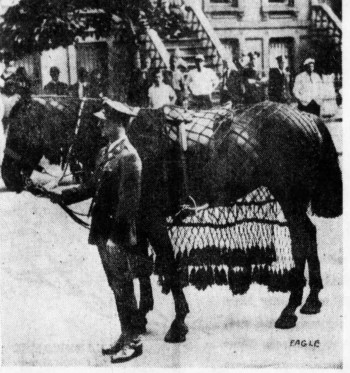 As per military traditions, Grant's horse was riderless in his funeral procession.