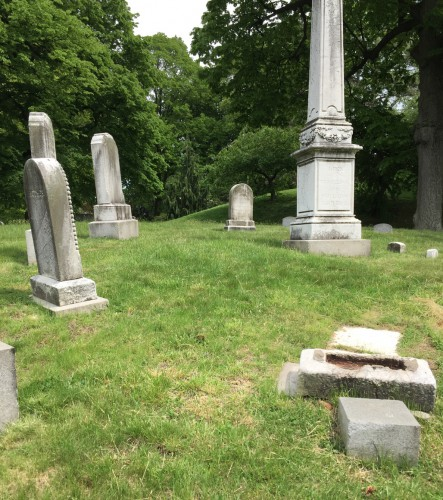 The Darling Family Lot. 17 individuals are interred here; the last was interred in 1899.
