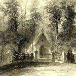 early green-wood scene