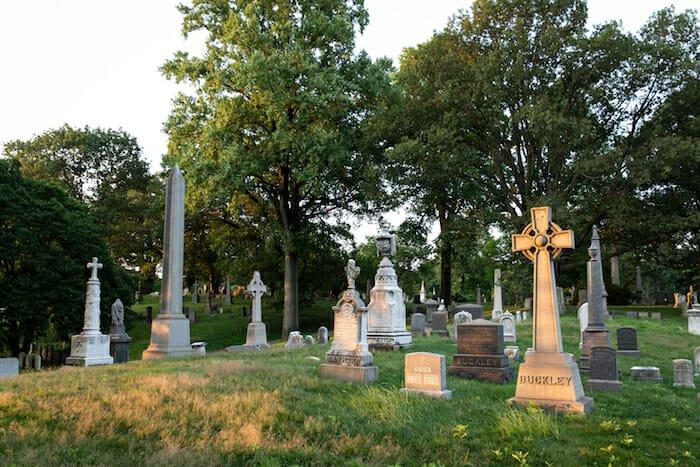 sunlit graves scene