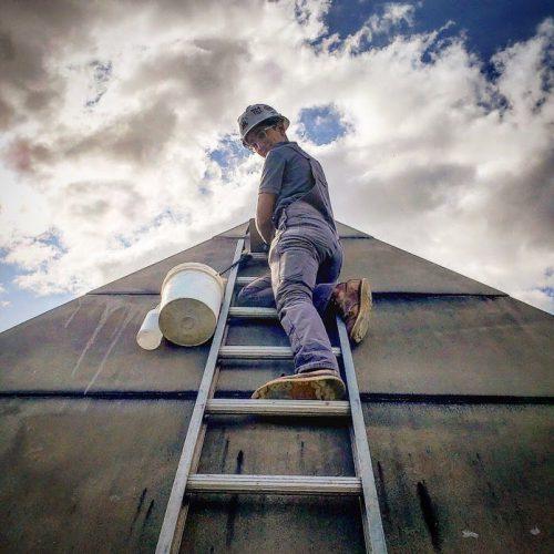 neela restoration ladder