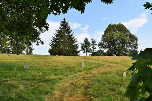 green-wood grasslands
