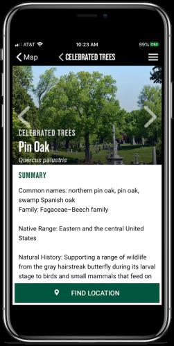 pin oak map screenshot